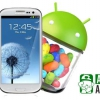 Fuite Galaxy S3 Jelly Bean ROM apparaît sur la vidéo, suggère Android 4.1 mise à jour est proche